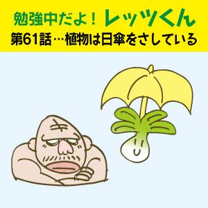 勉強中だよ!レッツくん 第61話…植物は日傘をさしている